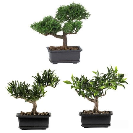 Create a Zen-inspired vignette with this faux bonsai tree, a serene accent for your home office or library.    Product: 3-Piece fau...