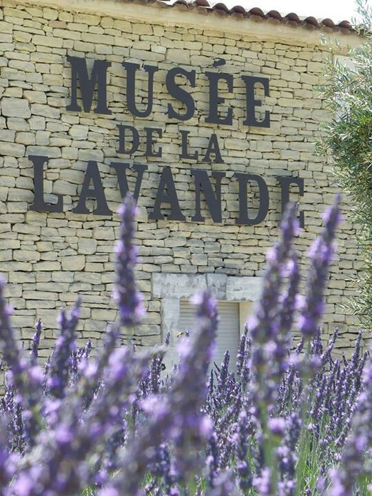 Musee de la Lavande - The Lavender Museum is in Coustellet, France, in the heart of the Luberon Regional Natural Park