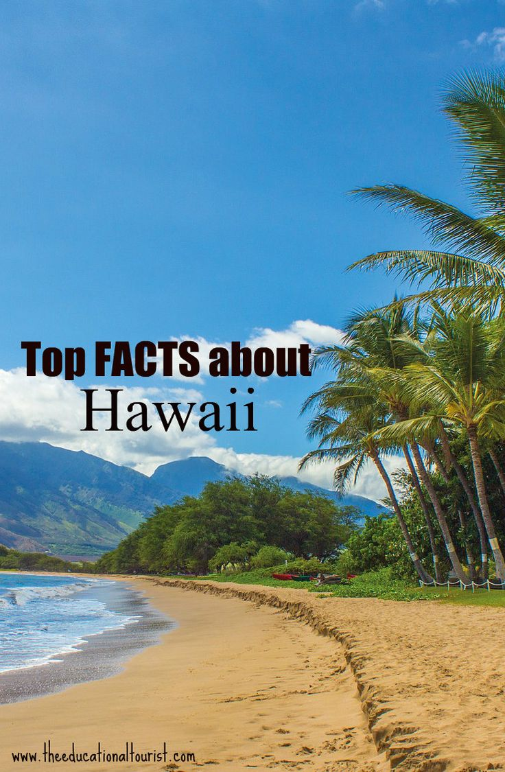 Hawaii Facts - Travel with KIDS http://theeducationaltourist.com/top-10-interesting-facts-hawaii/