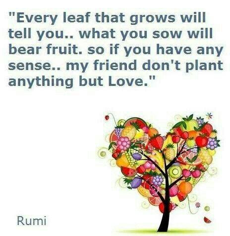 438 best rumi poetry images on pinterest rumi poetry for Hafiz gedichten