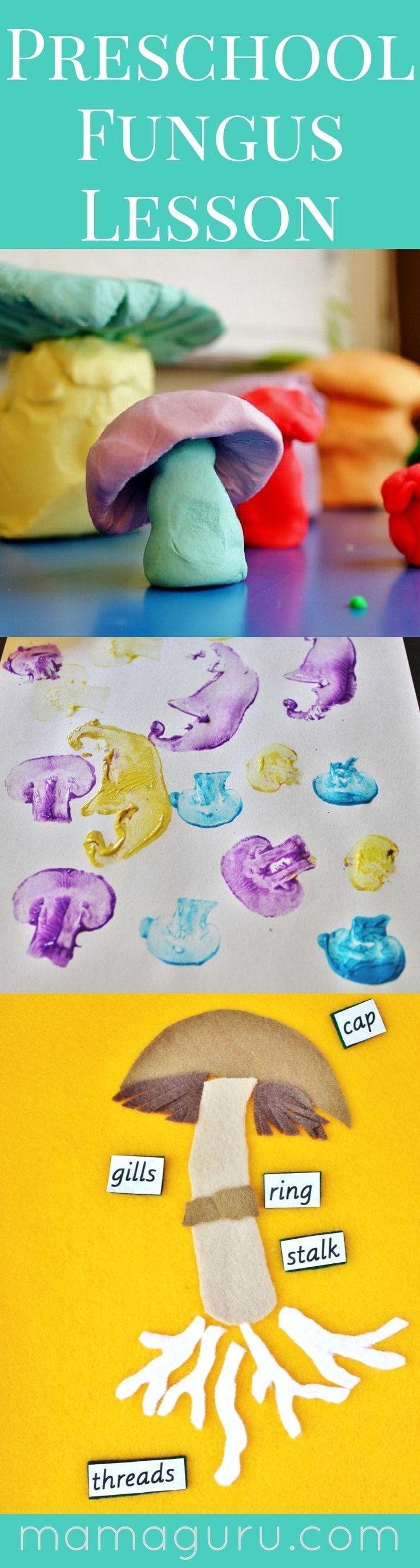 Preschool Fungus Lesson Plans ♥️ Mushrooms ♥️ Kid Art ♥️ Preschool Science ♥️ Montessori at Home ♥️ Playdoh ♥️ Felt Puzzle ♥️ Homeschool ♥️ DIY