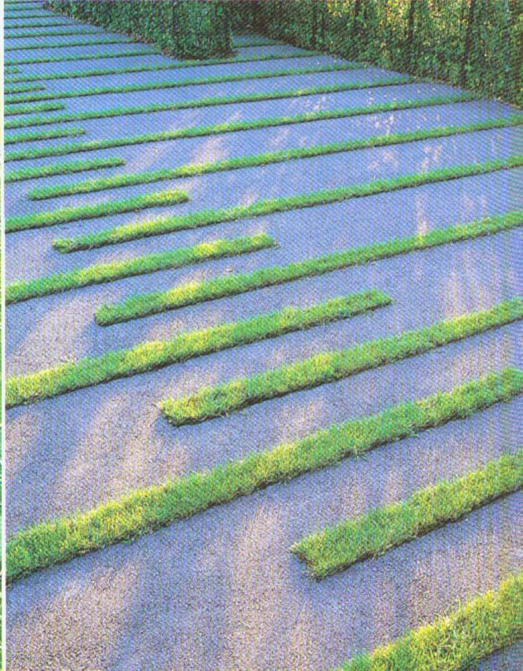 Grass and gravel pattern