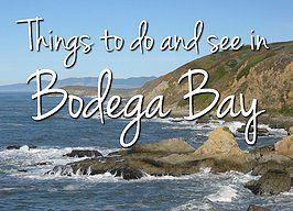 Hiking Trails in Bodega Bay