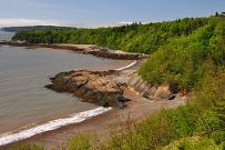 Irving nature park  https://www.google.ca/maps/place/New Brunswick/@45.2149391,-66.1335754,3a,75y,355h,90t/data=!3m8!1e2!3m6!1s-JqkBEIlKMes/S_snArkROgI/AAAAAAAABBs/PCsY8Jkv5cU!2e4!3e12!6s//lh5.googleusercontent.com/-JqkBEIlKMes/S_snArkROgI/AAAAAAAABBs/PCsY8Jkv5cU/s203-k-no/!7i1600!8i1063!4m2!3m1!1s0x4ca3fdd032350ecd:0xe66dc95a026805cc!6m1!1e1?hl=en