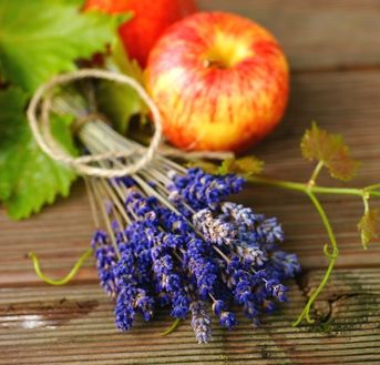 DIY: Apple & Lavender toner