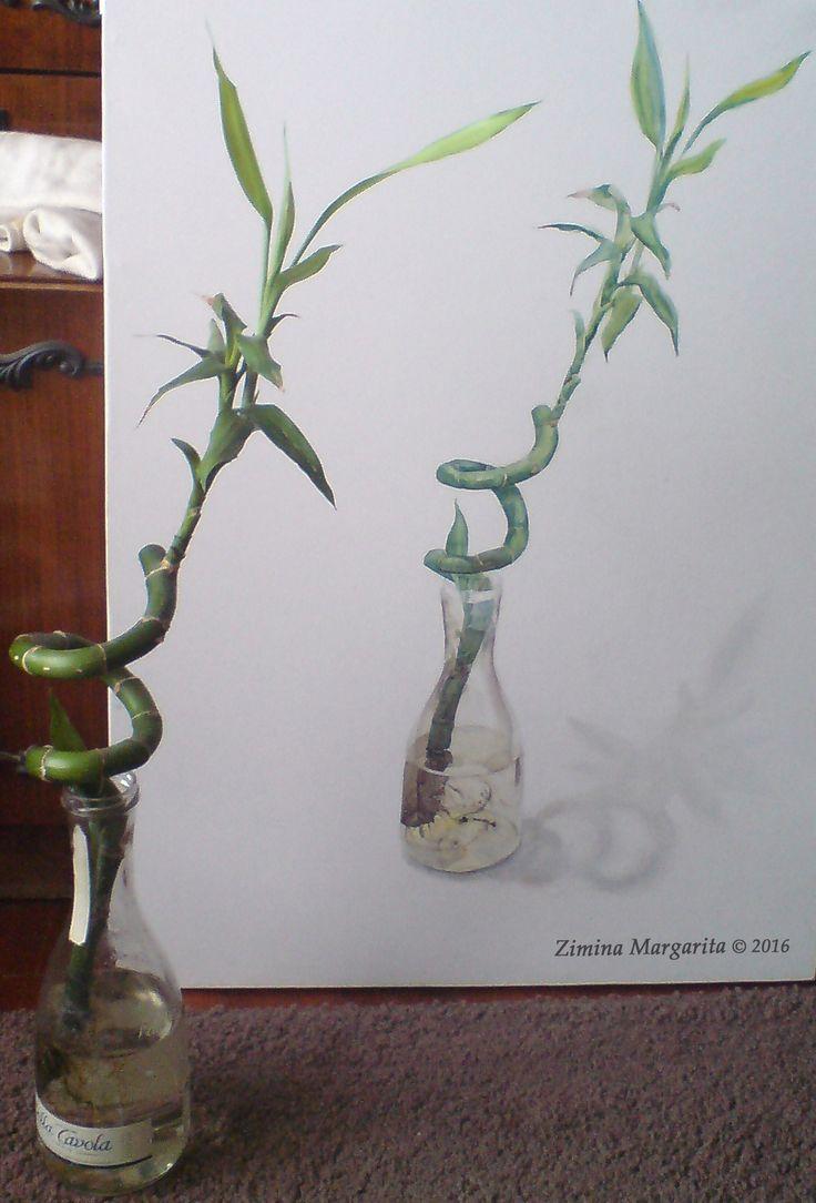 """""""Bamboo. Sketch"""" by Margarita Zimina. Бамбук, зарисовка. Зимина Маргарита."""