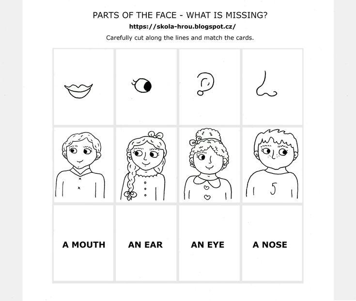 Parts of the face, anglický pracovní list pro děti, přiřazování, slovíčka - obličej.