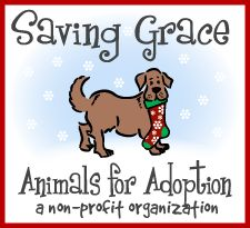 Saving Grace Animals for Adoption - Adoptable Dogs in the Triangle North Carolina