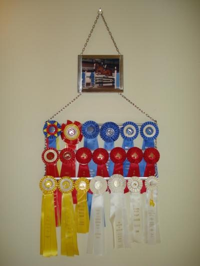 I'm pretty sure I could make something like this...to display Rachael's ribbons from alpaca shows.