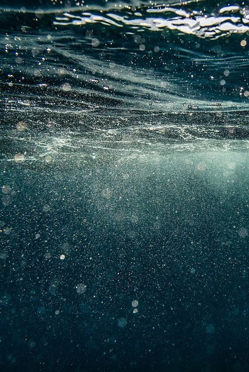 Water: Underneath the Waves