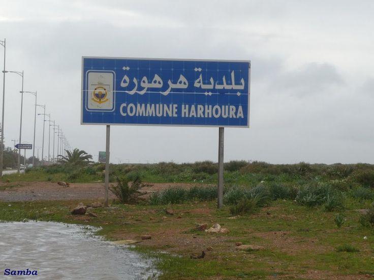 Harhoura, Sign 1 - Samba 2011