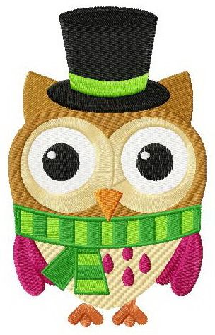Funny owl in hat machine embroidery design. Machine embroidery design. www.embroideres.com
