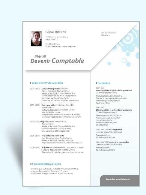 42 Curriculum Vitae Modele Romana Curriculum Vitae Curriculum Resume Template Free