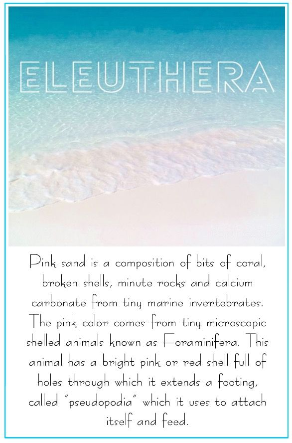 Pink Sand. Eleuthera. Bahamas. Where does pink sand come from? How is pink sand made? Origin of pink sand. Atlantic Ocean. Sand. Pink. The Blue Seahorse Gift Shop. Pink sand places. Island sand. Soft sand. Eleuthera sand. Pink sand beach. Beach with pink sand.