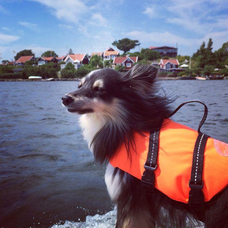 Båttur till Karlskrona