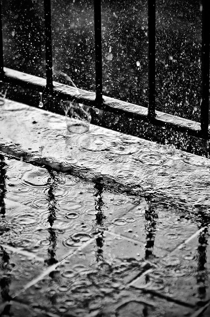 Rainy Day. Awesome use of slow shutter speed to capture the movement of the raindrops