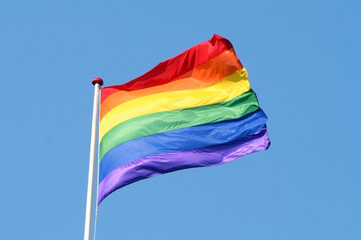 Dans quels pays européens le mariage homosexuel est-il autorisé ? Quelle forme d'union civile est reconnue dans les autres Etats membres ? Quelle est la position de l'Union européenne sur le mariage homosexuel ? Voici un tour d'horizon des législations nationales et européennes.
