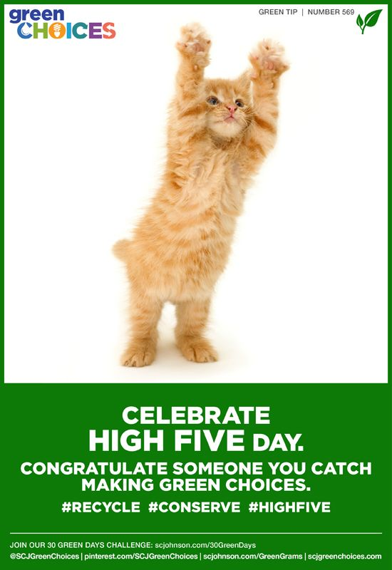 It's National High Five Day! Catch someone making #greenchoices and give em five! #eco #environment #green #celebrate #greengrams