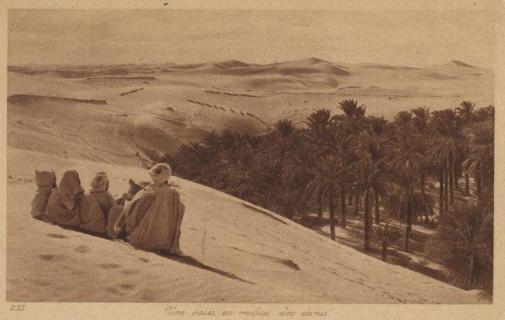 233 Une oasis au milieu des dunes Tripoli 1924?