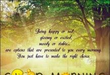 Top 10 Good Morning Quotes Pictures and Greetings SMS