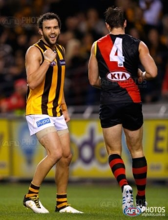 Hawthorn jersey front and Essendon jersey back - Luke Hodge and Jobe Watson