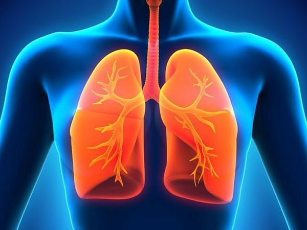 7 Ways To Keep Your #Lungs #Healthy