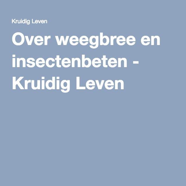 Over weegbree en insectenbeten - Kruidig Leven