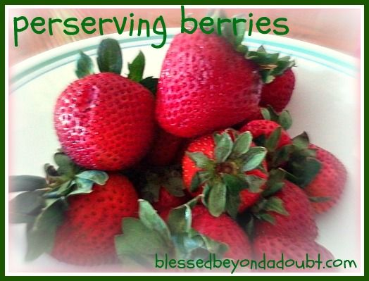 Tired of moldy strawberries?  Find out the secret to keep your strawberries from molding.  Tried and True!