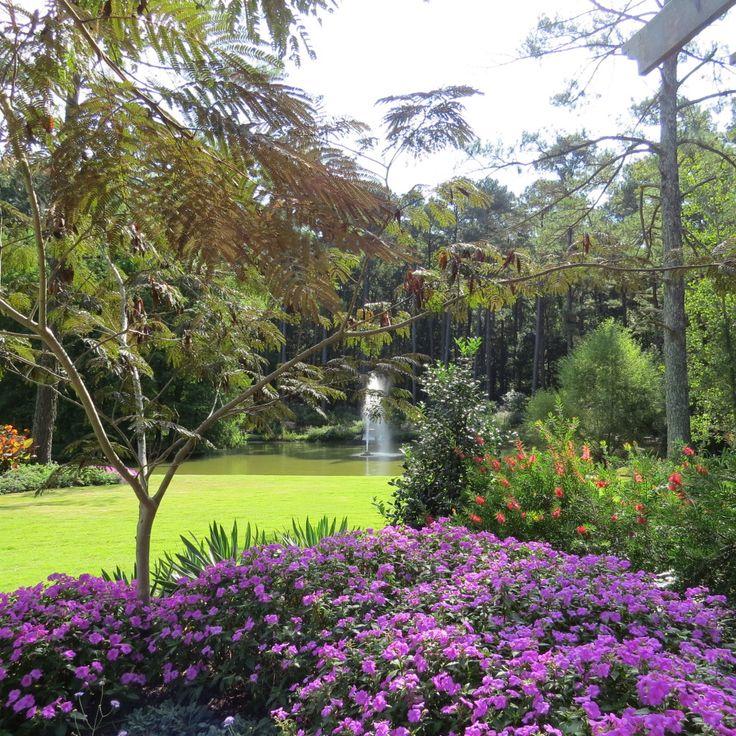 8 Best Ideas About Botanical Gardens On Pinterest Gardens Trips And Blog