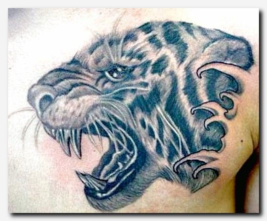 #tigertattoo #tattoo ink, africa map tattoo, feminine places to get a tattoo, mother tattoo designs, gambar tato salib, tattoo on the foot designs, two cats tattoo, top meaningful tattoos, cool fishing tattoos, maori patterns and meanings, irish half sleeve tattoos, tattoo boy, 3d tattoo snake, female cute tattoos, top 5 tattoo artists in the world, animal tribal designs