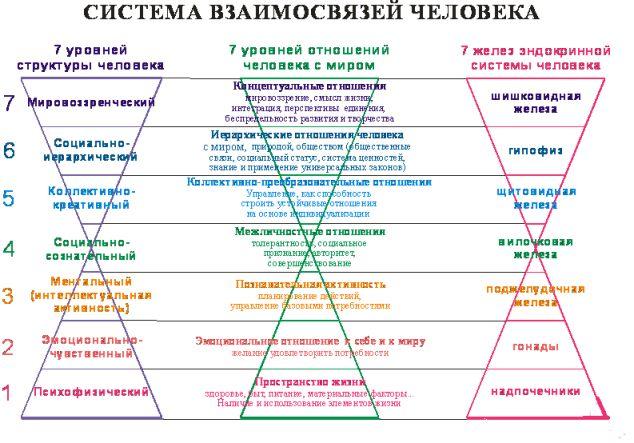 Система взаимосвязей человека