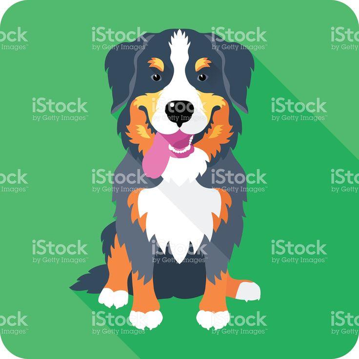 Бернский зенненхунд собака значок Плоский дизайн Сток Вектор Стоковая фотография