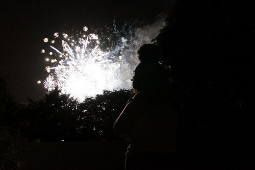 Backyard Fireworks : Watching fireworks from the backyard  Backyard Fireworks  Pinterest