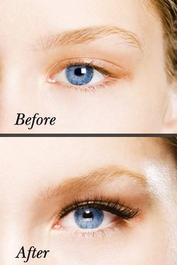 how to start a eyelash line