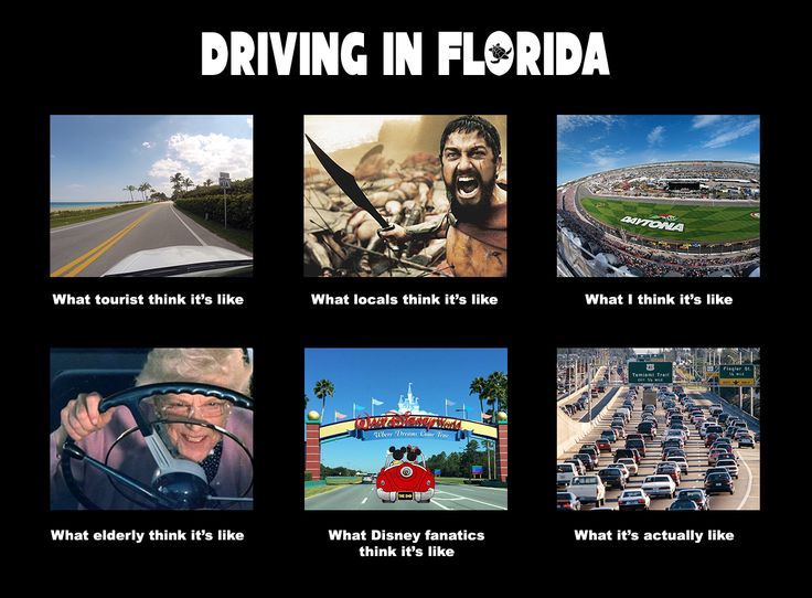 Driving in Florida ☀  pinned by http://www.wfpblogs.com/category/florida-memes/