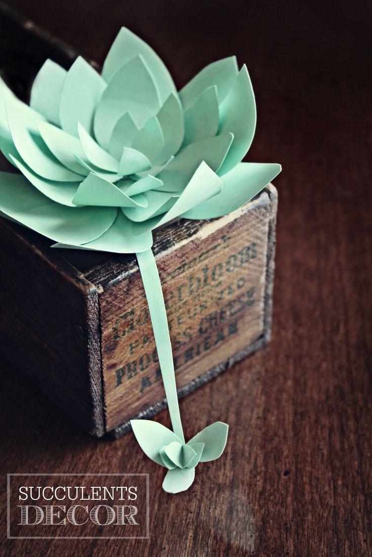 """Succulents Decor - Paper Crafts - Check out the """"Crafts & DIY"""" section for fun projects like these paper succulent decorations! http://www.christopherhiedeman.com/#!craftsdiy/c12ay"""