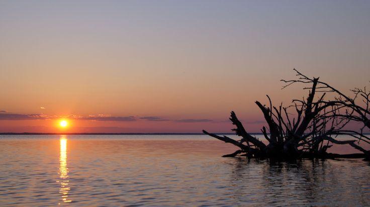 Take a Magical Kayak Ride, Merritt Island National Wildlife Refuge