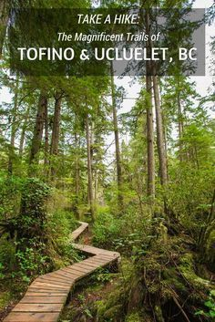 Where to experience the spectacular beauty of Tofino and Ucluelet, British Columbia by foot.