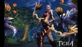 What is the top MMORPG of 2014?