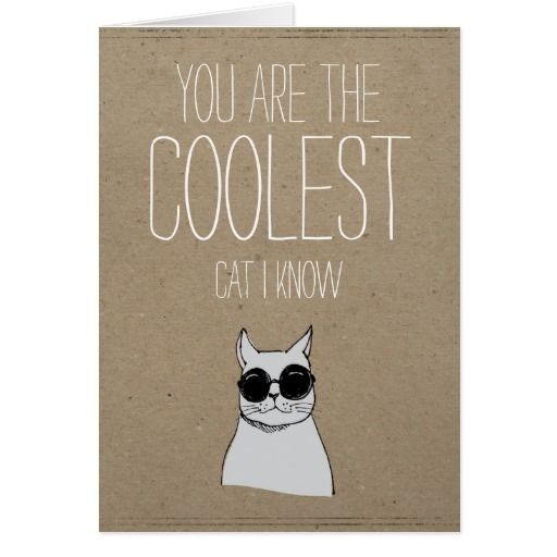 Found this, so cute! You're the coolest cat I know Valentines card