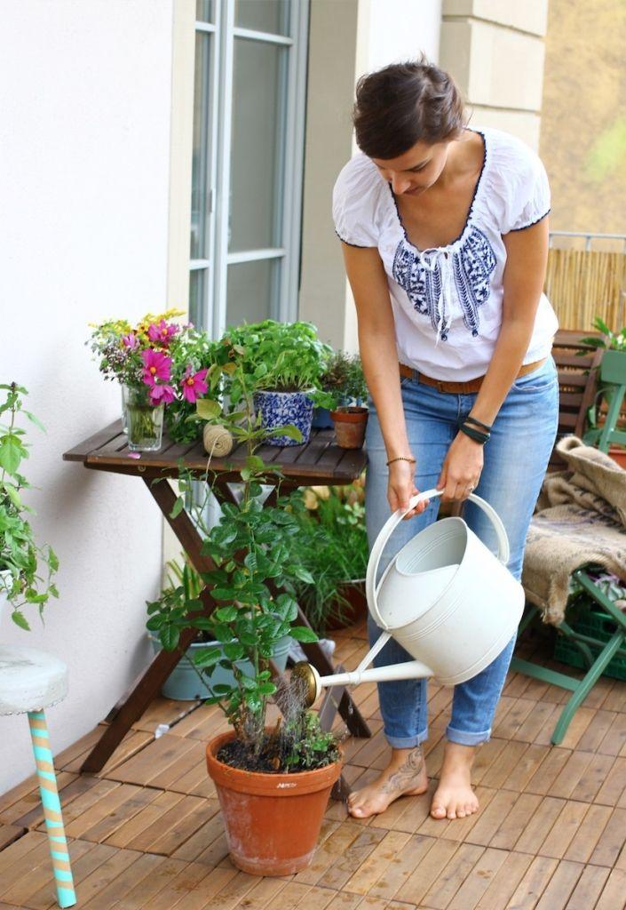 Pflegtipps Fur Deine Balkonpflanzen Schnell Und Einfach Zum Schonen
