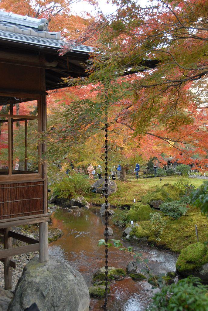 Tenryū-ji Temple and Gardens. Kyoto   da np&djjewell