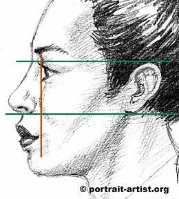 How the features line up in profile