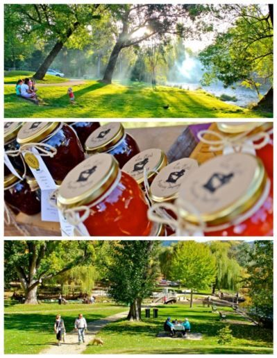 Bright Victoria : the glorious parks hosting the 'Make it, Bake it, Grow it' market : Alpine Valley Getaways