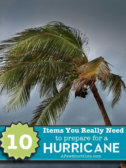 10 Items You Really Need to Prepare for a #Hurricane #emergency #weather