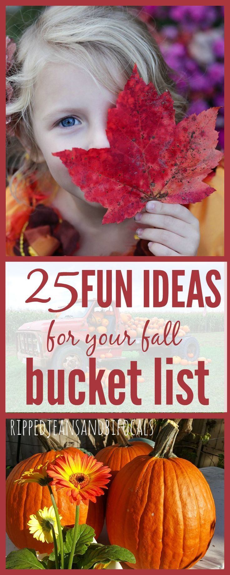 Fall Family Bucket List|Ripped Jeans and Bifocals  Bucket lists|fall bucket lists|activities to do with kids in the fall|fall activities for kids|family activities for fall|pumpkin patch locations|corn maze locations|Halloween craft ideas|easy Halloween crafts|fall recipe ideas|fall decorating ideas|