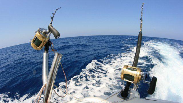 Carretes multiplicadores - Como elegir el mejor carrete de pesca - Todo para la pesca (6)