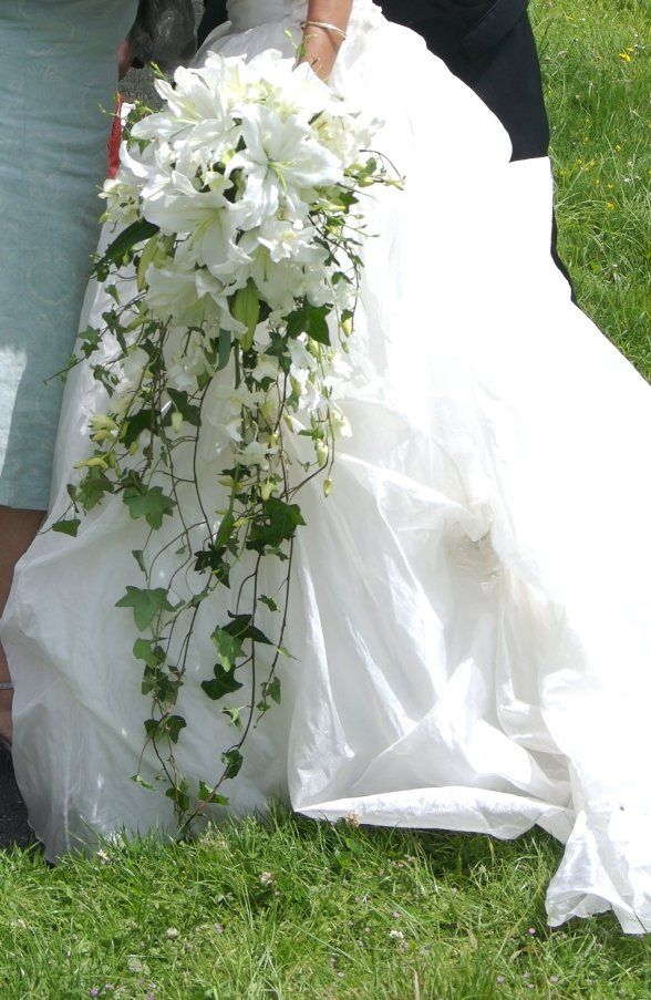 Wired waterfall/cascading bouquet of White Oriental Lilies, Singapore Orchids and Trailing Ivy