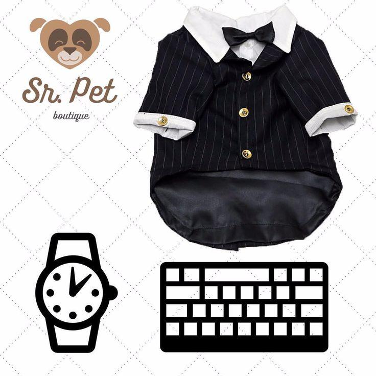 - Dog Executivo com muito estilo ✍ Terno risca de giz preto em acabamento fino de alfaiataria para ocasiões especiais e formais  Tecido 100% algodão com acabamento em cetim e botões dourados para seu ficar ainda mais elegante ✨