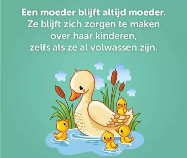 Citaten Moeder En Kind : Beste afbeeldingen van spreuken moeder kind citaten